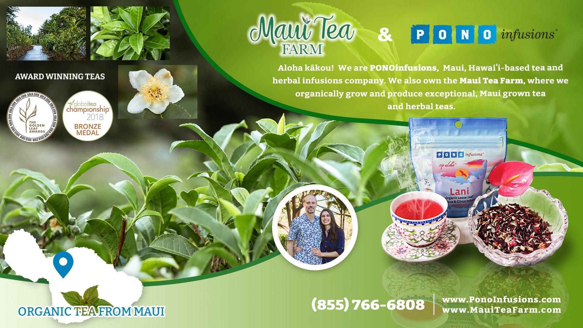 Maui Tea Farm Pono Infusions Graphic